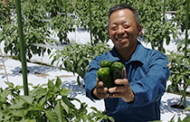 やしろ自然野菜工房 津田博基さん