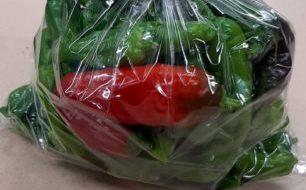 【10月9日】『新開地まちかどガーデンサークル』は湊川公園で育てた野菜と野菜苗を持ってきてくれます!